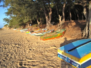 Fishing boat fleet-Tofo Beach