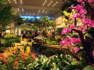 Orchid garden-Singapore Airport