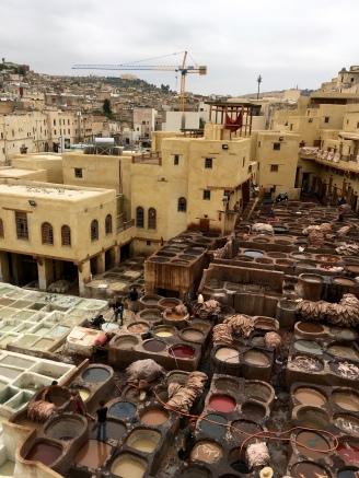 Fes medina - tannery