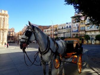Seville taxi