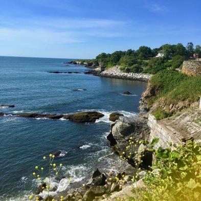 Cliffs below Newport Mansions