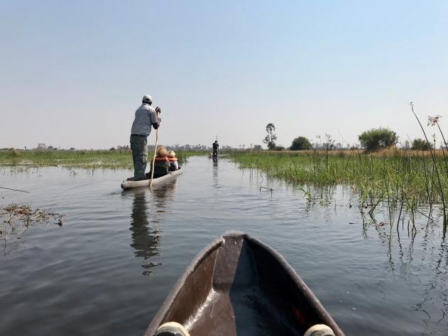 Makoro ride, Okavango Delta